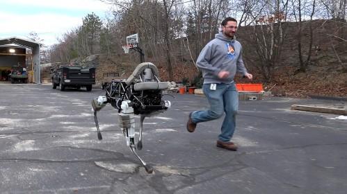 Cachorro robô 01